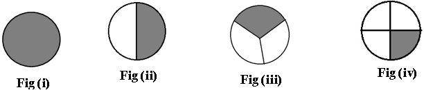 TS vi Math fractions and decimals 1