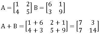 ICSE X maths Matrices 14