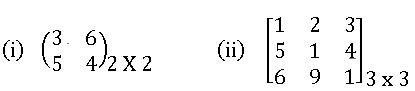 ICSE X maths Matrices 5